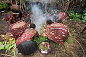 Dani Tribe preparing Earth Oven, Baliem Valley, West Papua, Indonesia