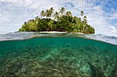 Snorkeling in Lagoon of Ahe Island, Cenderawasih Bay, WestPapua, Papua New Guinea, New Guinea, Oceania