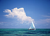 Fishermen in dhow sailing in shallow water in front of large thunder storm cloud, Ilha de Mohambique, Mozambique
