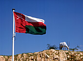 Flag of Oman and goat on hill, Oman