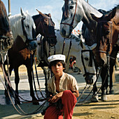 Boy and horses during Feria, Seville, Spain