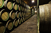 Barrels in wine celler, La Rioja, Spain
