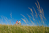 Couple going through meadow on tandem bicycle on the South Downs, Low Angle View, West Sussex, England
