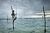 Stilt Fisher fishing, Koggala, Weligama Bay, stilt fishing is only done worldwide in Sri Lanka, around Unawatuna, Sri Lanka
