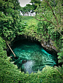 Fale and ladder To Sua Ocean Trench, laggon and sea, Lotofaga, Upolu, Samoa, Southern Pacific