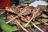 Fish barbecue at local market, Luang Prabang, Laos