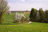 Sculpture Wortsegel in idyllic landscape, Sotzweiler-Bergweiler, Saarland, Germany, Europe