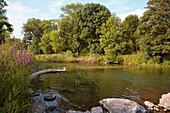 River Nied in green countryside near Niedaltdorf, Saarland, Germany, Europe