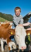 Boy sitting on a cattle, Hofbauern-Alm, Kampenwand, Chiemgau, Upper Bavaria, Germany