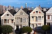 USA, California, San Francisco, The Haight, houses at Alamo Square
