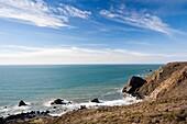 USA, California, San Francisco Bay Area, Marin Headlands, Golden Gate National Recreation Area, Muir Beach Overlook, view of the Pacific Ocean