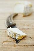 Corsican traditional knife and Brocciu of the ´passu´ type, farmers Raphael Vesperini and Charlotte Lugrezi, Sarrola-Carcopino, South Corsica, Corsica, France