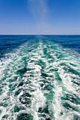 ships wake, wake, ship, sea, ocean, Pacific Ocean, horizon, travel, travelling, looking back, nobody, vertical. ships wake, wake, ship, sea, ocean, Pacific Ocean, horizon, travel, travelling, looking back, nobody, vertical