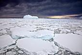 Dark storm cloud over iceberg and heavy pack ice, Penola Strait, Antarctic Peninsula