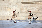 Soldiers Evzones on guard in the Monument to the Unknown Soldier and Parliament Royal Palace  Syntagma Square  Athens  Greece