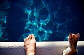 20's, Bad, Blau, Erwachsene, Finger, Fuß, jung, Junger Erwachsener, Jungtier, Kätzchen, Katze, Licht, Rand, Reflektion, Schauen, Schwimmbad, Sommer, Sonne, Stehen, Teenager, Urlaub, Wasser, L55-1293425, AGEFOTOSTOCK