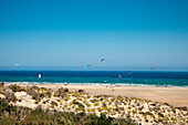 Kite surfer, Playa Barca, Playa de Sotavento, Jandia peninsula, Fuerteventura, Canary Islands, Spain