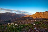 Overlook from Viewpoint Degollada de Los Granadillos, Fuerteventura, Canary Islands, Spain