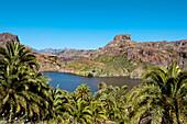 Reservoir, Presa de Soria, Gran Canaria, Canary Islands, Spain
