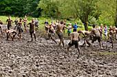 Teenagers mudwrestling, Lake Starnberg, Upper Bavaria, Germany, Europe