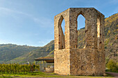 Monastery ruin Stuben with Calmont, Bremm, Rhineland-Palatinate, Germany, Europe