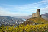 Landshut castle in fall, Bernkastle-Kues, Rhineland Palatinate, Germany