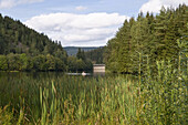 Romantic lake, Oker Reservoir, Oker dam, Harz, Lower Saxony, Germany
