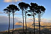 Monte Cofano, Monte Cofano, Trapani, Sicily, Italy