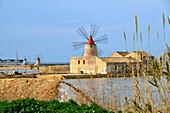 Saltfields of Mozia, San Pantaleo, Sizily, Italy