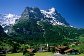 grindelwald, majestic, mountains, peaks, Switzerlan. Grindelwald, Holiday, Landmark, Majestic, Mountains, Peaks, Switzerland, Europe, Tourism, Travel, Vacation, Village