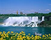 awe, boat, buildings, flowers, inspiration, inspira. America, Awe, Boat, Buildings, Flowers, Holiday, Inspiration, Inspirational, Landmark, New york, Niagara, Niagara falls, Power