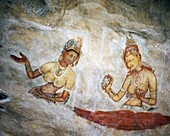 Ancient Paintings, Cultural Triangle, Maidens Fresc. Ancient, Cultural, Frescoes, Heritage, Holiday, Landmark, Maidens, Paintings, Sigiriya, Sri lanka, Asia, Tourism, Travel, Triang