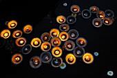India, Uttar Pradesh, Mathura, Yamuna river, Aarti, offering of light