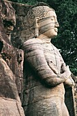Standing Buddha, Gal Vihara monastrery, Polonnaruwa, Sri Lanka