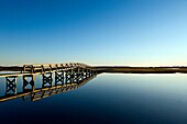Boardwalk extending over the salt pond and marsh to the beach, Sandwich, Cape Cod