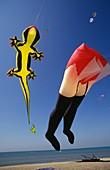 europe, italy, lazio, ostia beach, international kites meeting, huge kites
