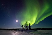 Aurora Borealis Northern Polar Lights and waxing moon over the boreal forest outside Yellowknife, Northwest Territories, Canada, MORE INFO The term aurora borealis was coined by Pierre Gassendi in 1621 from the Roman goddess of dawn, Aurora, and the Greek