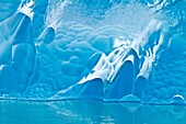 Glacial iceberg detail from ice calved off the Sawyer Glacier in Tracy Arm, Southeast Alaska, USA, Pacific Ocean  MORE INFO Tracy Arm is a fjord in Alaska near Juneau  It is named after a Civil War general named Benjamin Franklin Tracy  Sawyer Glacier is