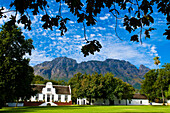 South Africa, Western Cape Province, Winelands, Stellenbosch valley, Wine road, Rustenberg Estate (1682)