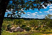 Africa, Zimbabwe, North Matabeleland province, the Ndebele village Monde