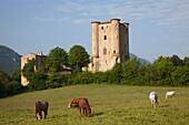 France, Languedoc-Roussillon, Aude, Arques, Arques Castle