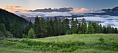 Blick über das Val di Sole zum Brenta Massiv, Brenta Adamello Naturpark, Trentino, Italien