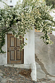 White Bougainvillaea obove door in the street, Alcoutim, west coast of Algarve, Costa Vicentina, Algarve, Portugal, Europe