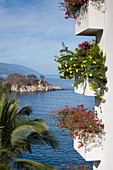 Tropoical flowers on balconies of high-rise building at Mismaloya, near Puerto Vallarta, Jalisco, Mexico, Central America