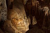 Horse, prehistoric painting, cave painting, about 15000 BC, Caballo del Camarin, Cueva de la Pena de Cadamo, cave, San Roman de Cadamo, near, Pravia, replica, Parque de la Prehistoria de Teverga, Teverga, Park of Prehistory in Teverga, province of Asturia