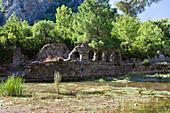 Ruins of the byzantine Basilica, ancient Olympos, lycian coast, Lycia, Mediterranean Sea, Turkey, Asia