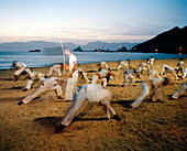 Children and teenagers practicing Capoeira at Laginha beach in the evening, Mindelo, Sao Vicente, Ilhas de Barlavento, Republic of Cape Verde, Africa