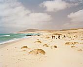 Hikers on guided tour on the east coast by Naturalia Ecotours, Boa Vista, Ilhas de Barlavento, Republic of Cape Verde, Africa