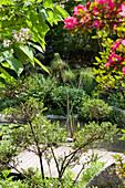 Pond with boardwalk at Andre Hellers' Garden, Giardino Botanico, Gardone Riviera, Lake Garda, Lombardy, Italy, Europe