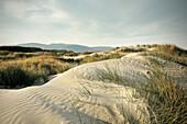 Sand dunes along the beach of Cloudy Bay, Bruny Island, Tasmania, Australia